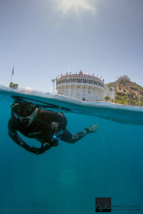 SSI freediving at Casino Point with Margo.