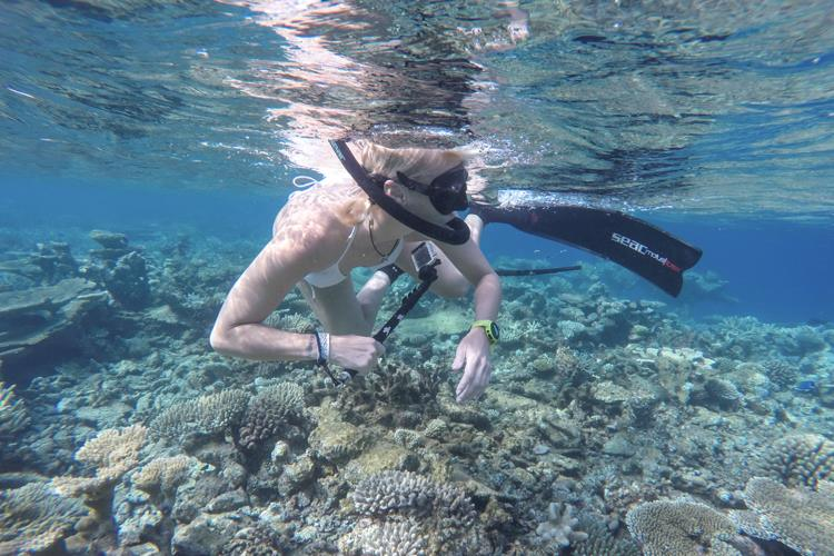 Crazy coral snorkeling with SEAC.