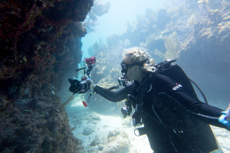 Stephanie wall diving with her Olympus camera.