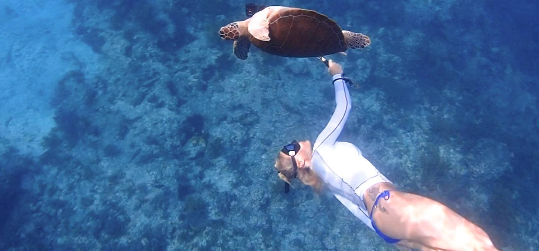 Photographing turtle during Olympus Key Largo trip.