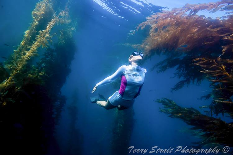Underwater in San Diego with Mares rash guard.