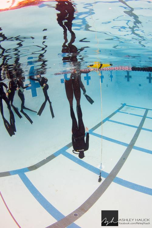 SSI beginner freediving course pool.