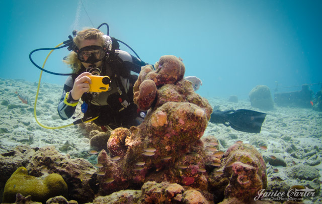 Stephanie photographing coral in Bonaire using watershot.