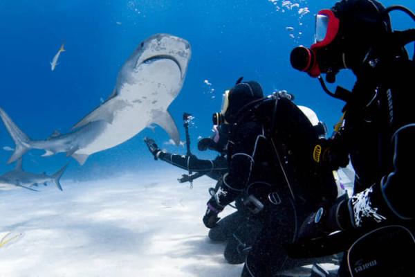 Diving OTS full-face mask in Bahamas.