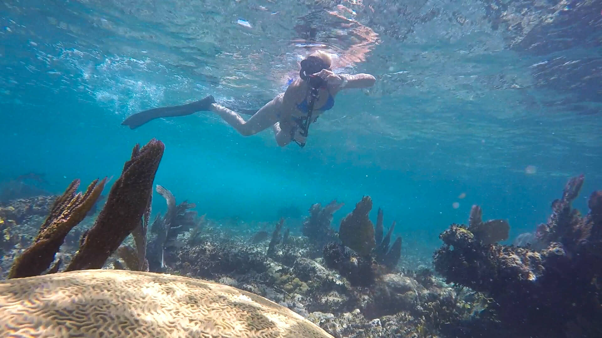 Diving from Isla Mujeres during Family Vacation.