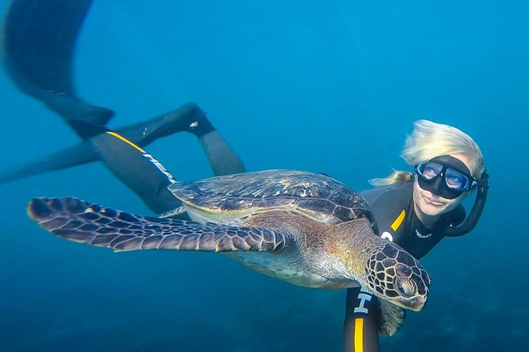 7 Great Spots For Snorkeling In San Diego Scuba Diver Girls