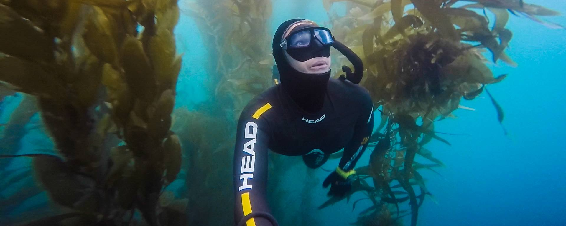 Exploring the San Diego kelp forest.